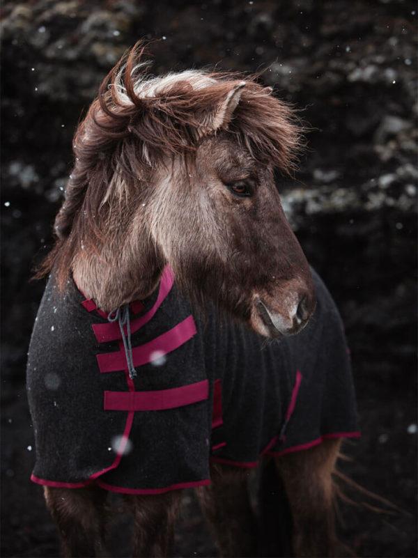 Isländer trägt hochgeschlossene Abschwitzdecke aus Wolle in Weinrot