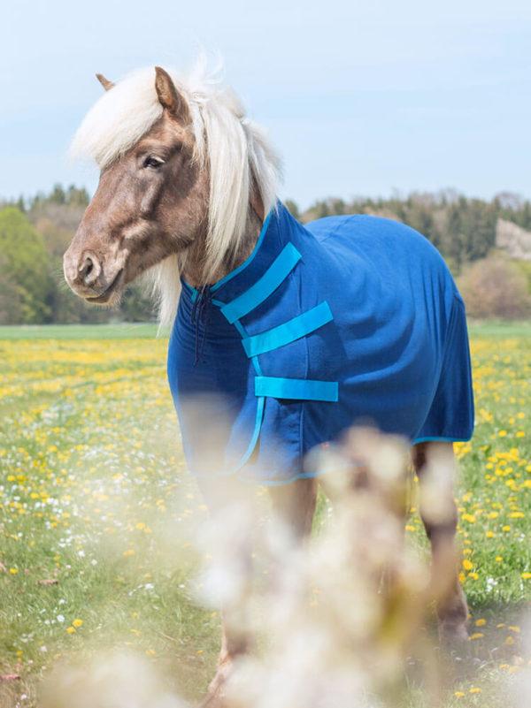 Islandpferd trägt Sportsfreund Studios Abschwitzdecke Blau