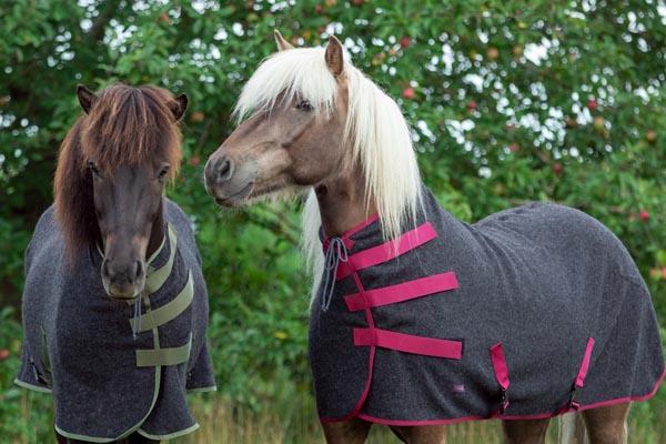 Zwei Isländer tragen Woll Abschwitzdecken