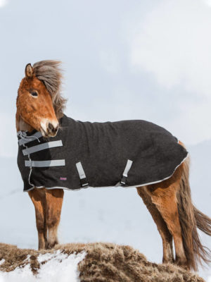 Islandpferd trägt hochgeschlossene Abschwitzdecke aus Wolle in Grau
