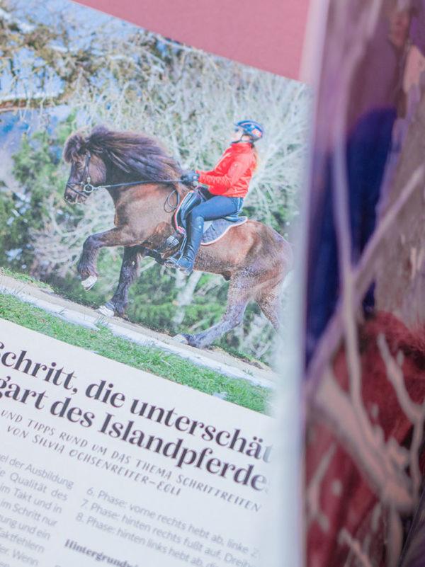 Auschnitt aus dem Islandpferde Magazin Sportsfreund