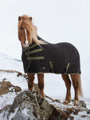 Isländer trägt Abschwitzdecke aus Wolle in Grün