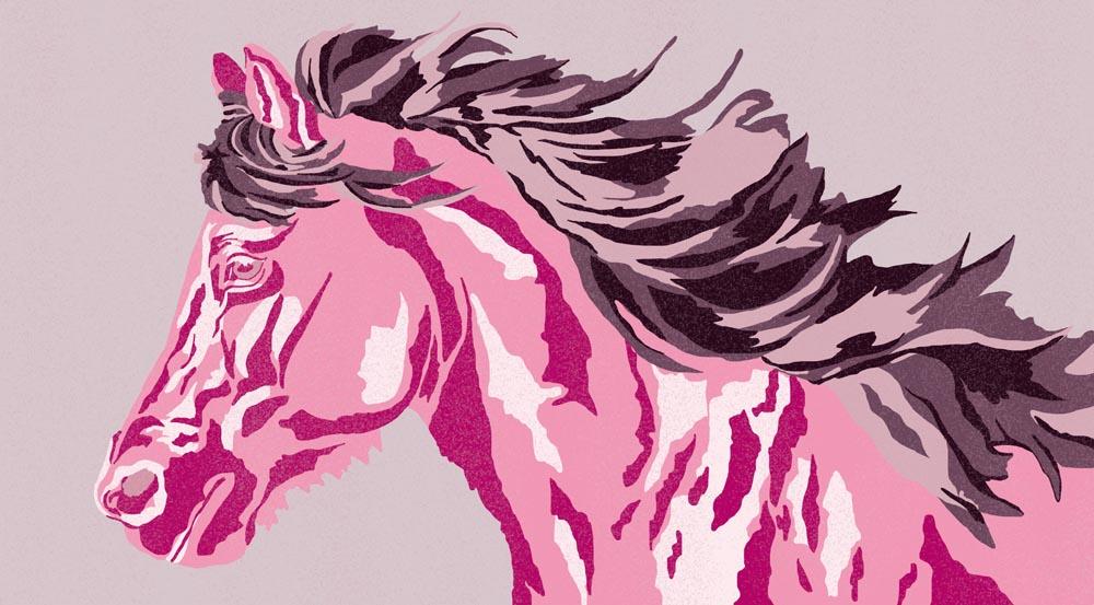 Pferde Schwitzen und Thermoregulierung
