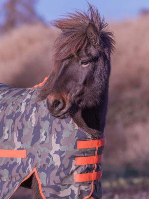 Isländer trägt Regendecke in Camouflage Orange