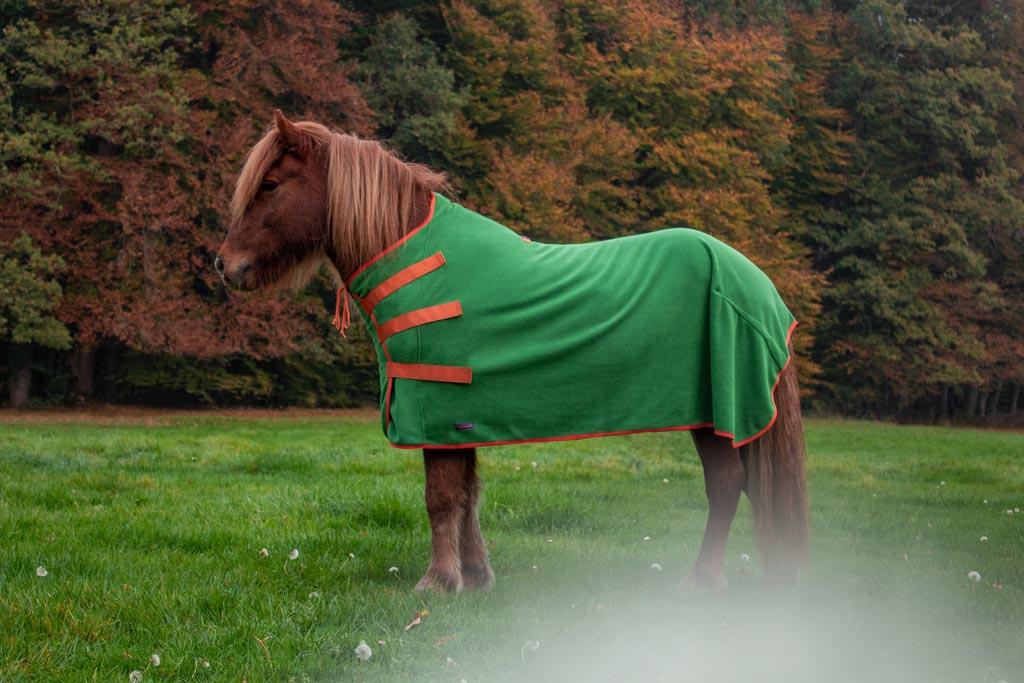 Islandpferd trägt Deckengröße 125