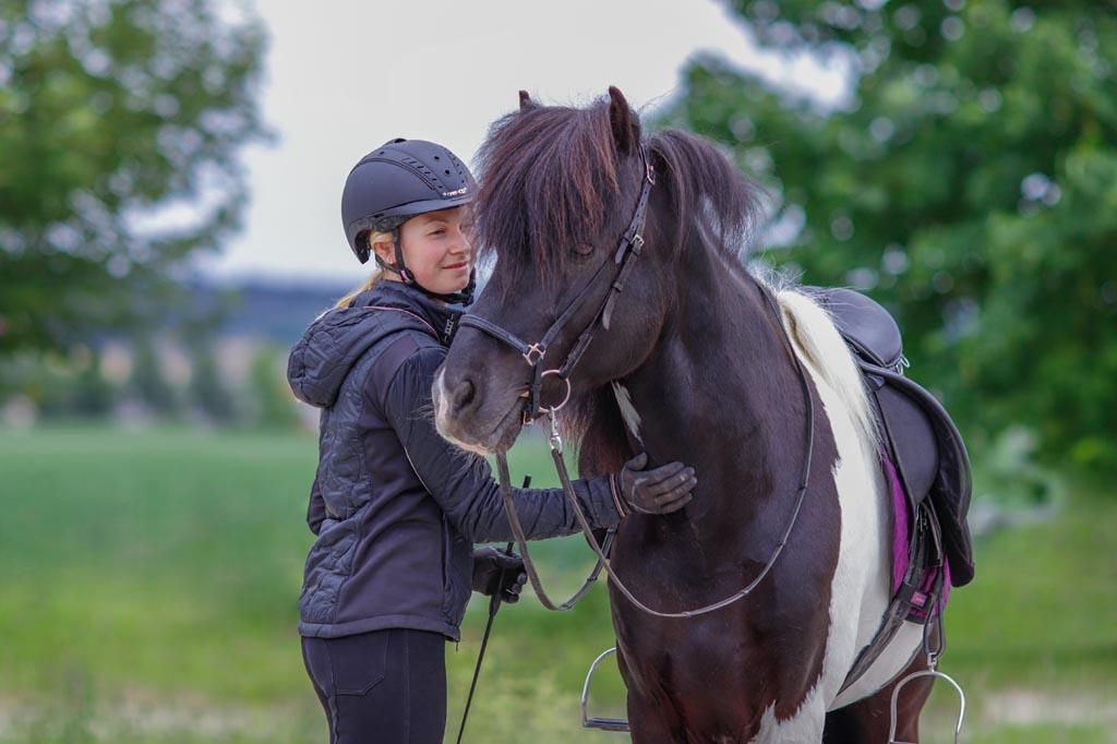Mensch streichelt Pferd