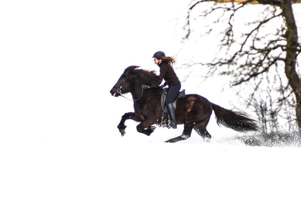 Reiter Galoppiert im Schnee