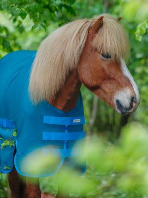 Pferd trägt Regendecke Blau